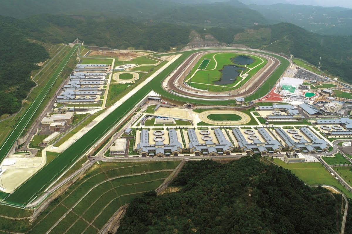 21 Hong Kong Jockey Staff Arrested For Illegal Bookmaking