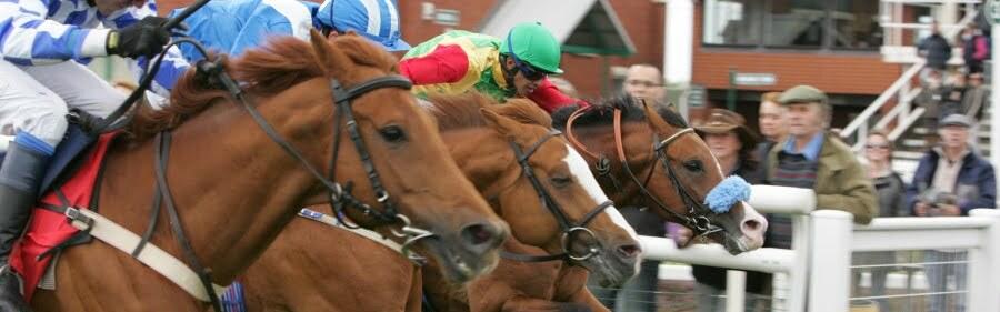 BHA And ARO Join To Bring Arabian Racing To British Racing