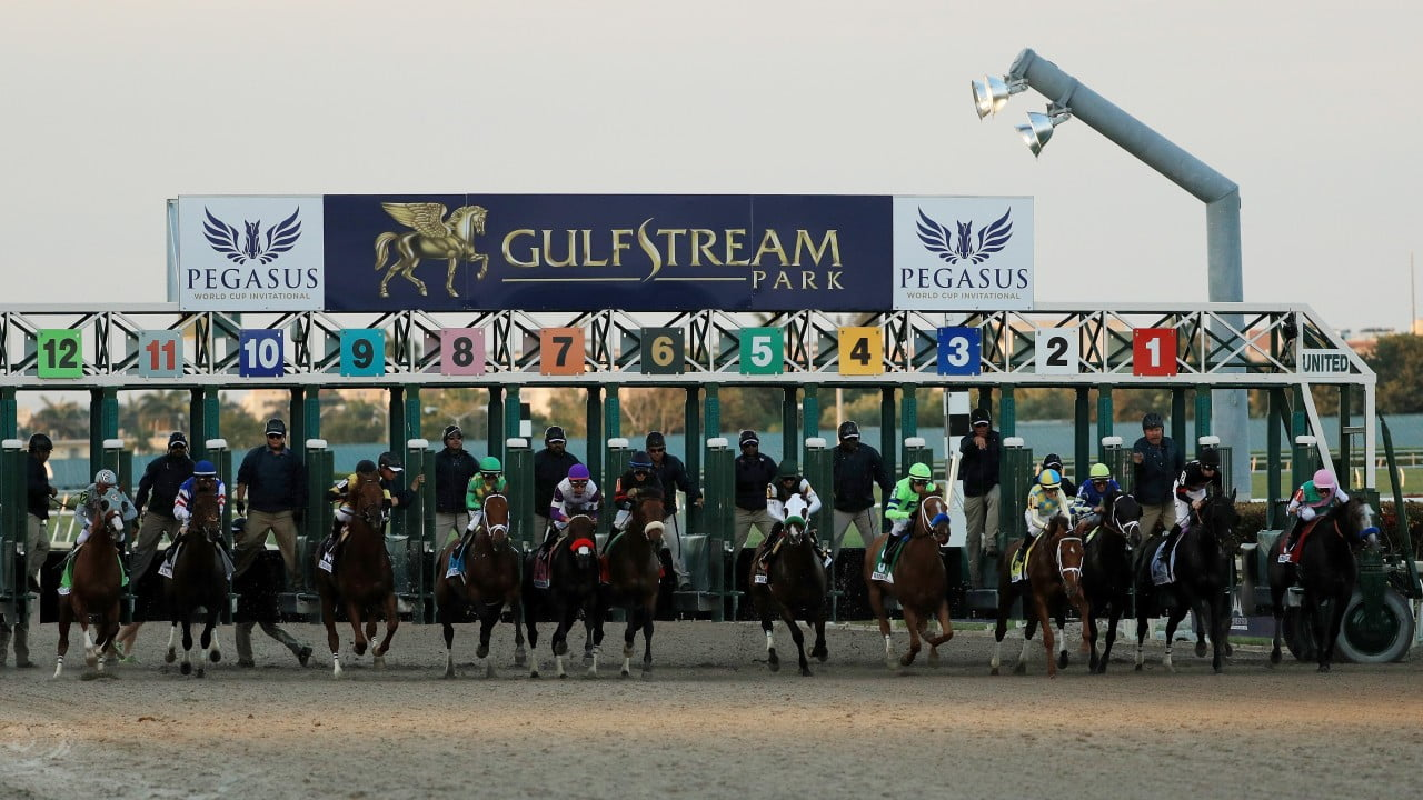 Pegasus World Cup Wins Global Interest And Coverage