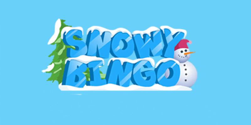 Snowy Bingo Review – Is This A Good Bingo Site?