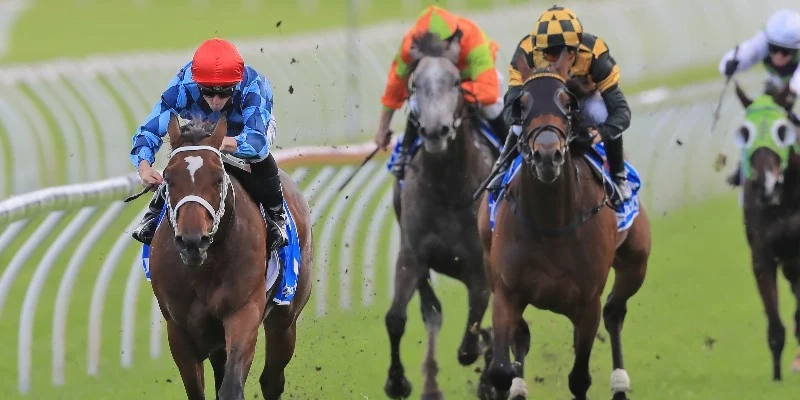 Coolmore Legacy Stakes LIVE Stream – Watch Australian Racing Online