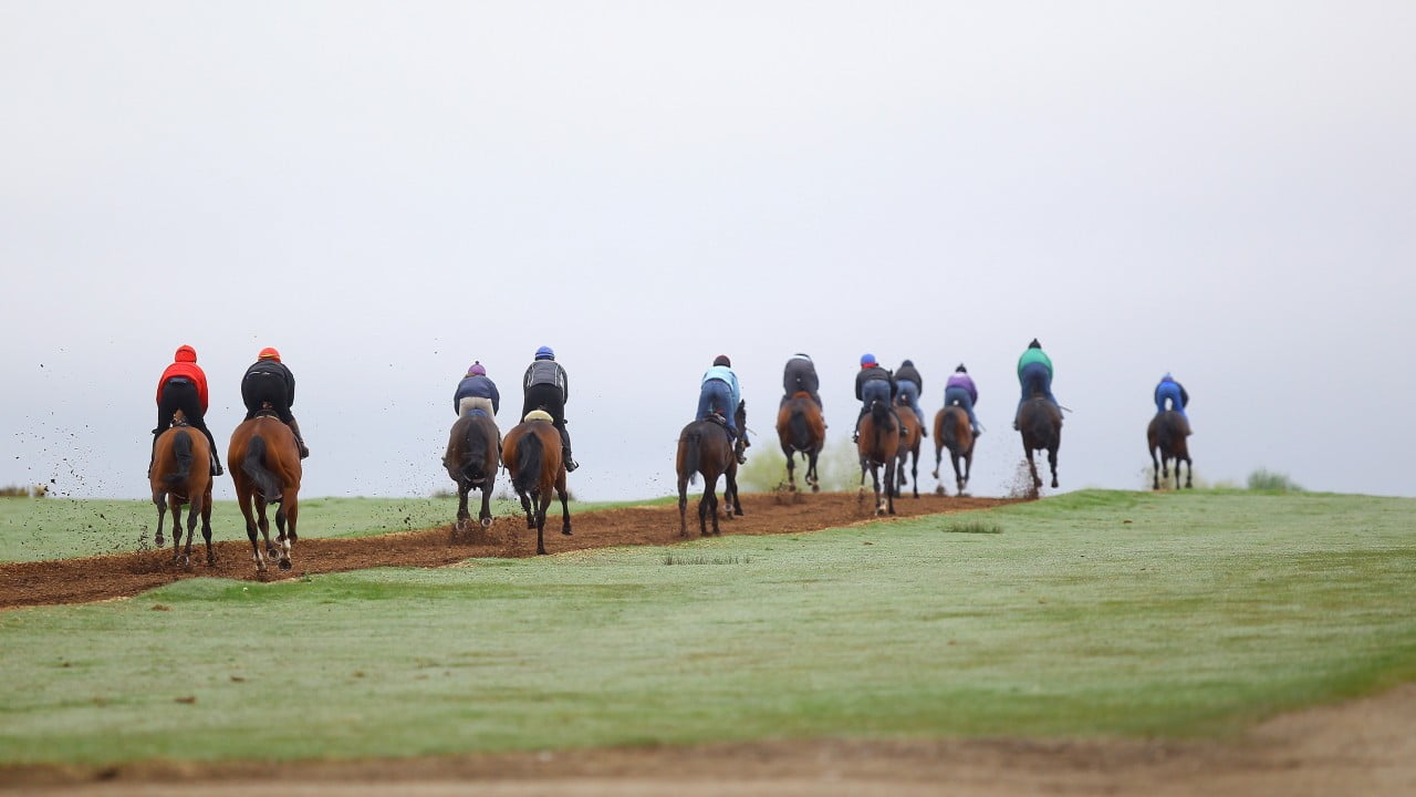 Irish Horse Racing To Resume June 8