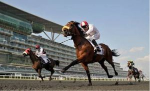 XB Net Agrees Exclusive Terms With New York Racing Association