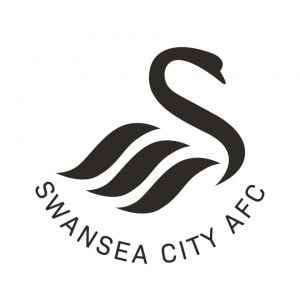 Swansea City Launch The Big Step Link