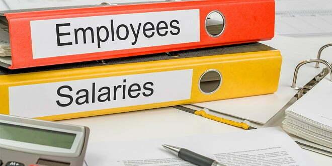 Salary Survey Reveals Slight Drop During Pandemic
