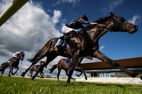NPHET Indicates Irish Racing Could Be Exempt From Further Lockdown