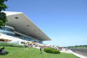 CDI Initiates Process To Sell Home Of Arlington International Racecourse