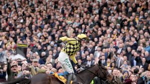 Horse Racing Spectators Omitted From Govt's Spectator Return
