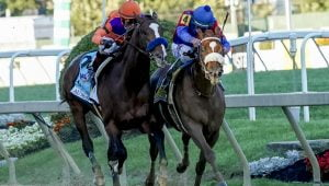 Turf Paradise Signs Multi-Year Totaliser Deal With AmTote Intl