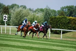 BOS Backs Gambling Market Inquiry Rejection Of Horse Racing Levy