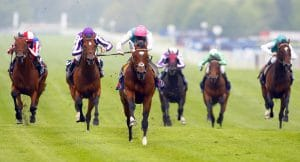 Leading Horse Racing Figures Back Diversity And Inclusion Improvement