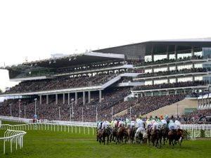 Jockey Club Considers Adding Fifth Day To Cheltenham Festival