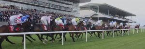 Ballybrit Race Track Plans 5,000 Spectator Expansion For Galway Races