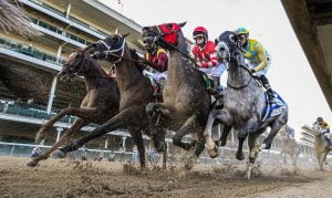 XB Net And BoyleSports Renew North American Racing Content Deal