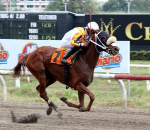 Panamanian Horse Racing Hails Optimistic Prospects