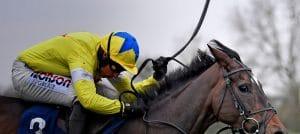 BHA Reveal Horse Whipping Enquiry Raises 2,000 Responses