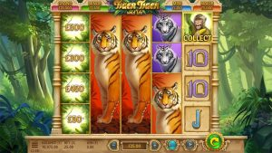 Tiger Tiger Wild Life Slot To Be Released By Yggdrasil And G Games